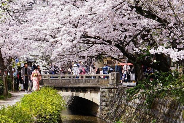 kyoto-philosophers-path