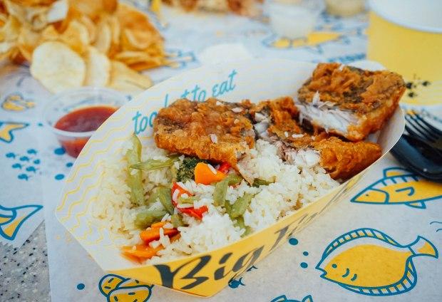 big-fish-small-fish-rice