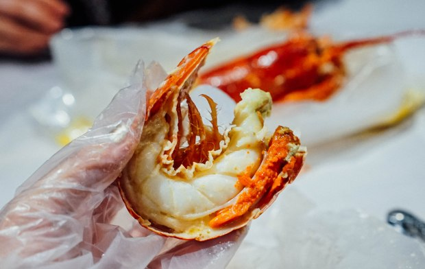 the-boiler-boston-lobster-3