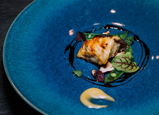 rizu-miso-marinated-black-cod