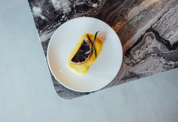 amber-ember-lemon-sponge
