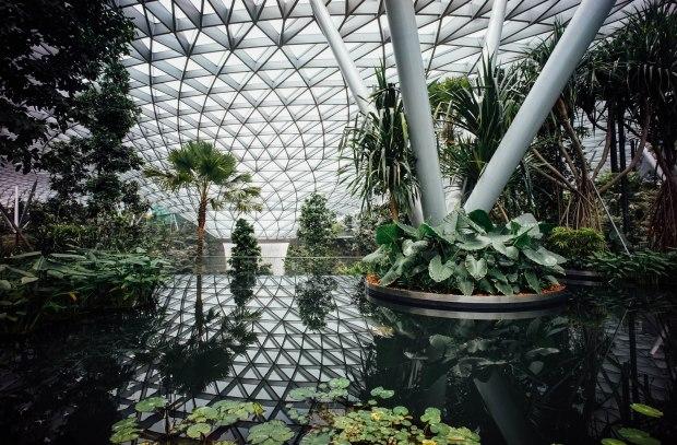 jewel-changi-airport-canopy-park