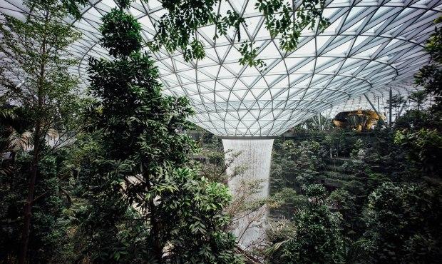 jewel-changi-airport-hsbc-rain-vortex-tiger-street-lab