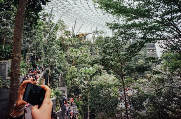 jewel-changi-airport-shiseido-forest-valley