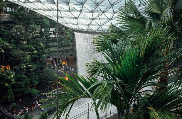 burger-and-lobster-singapore-jewel-changi-airport-hsbc-rain-vortex