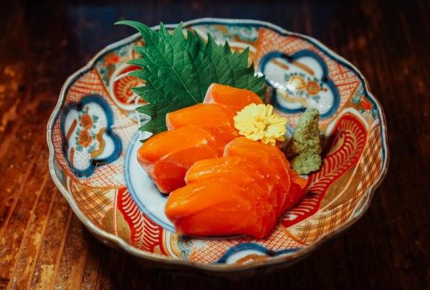 station-front-bar-okura-shiga-sake-sashimi