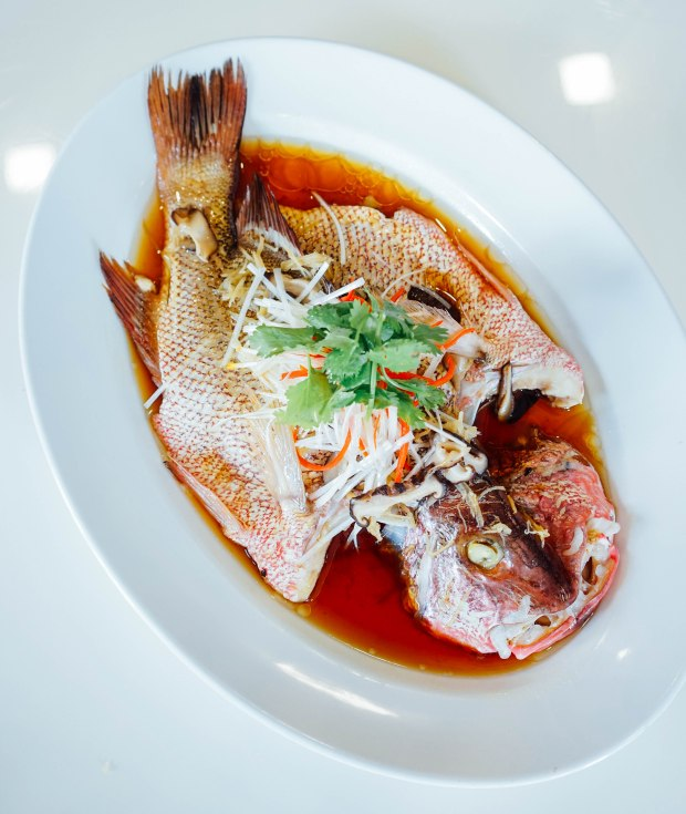 goldleaf-restaurant-steamed-red-snapper-in-hong-kong-style