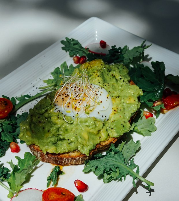 botany-smashed-avocado-toast-2