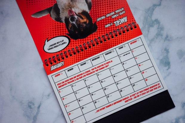 oscas-2021-calendar-2