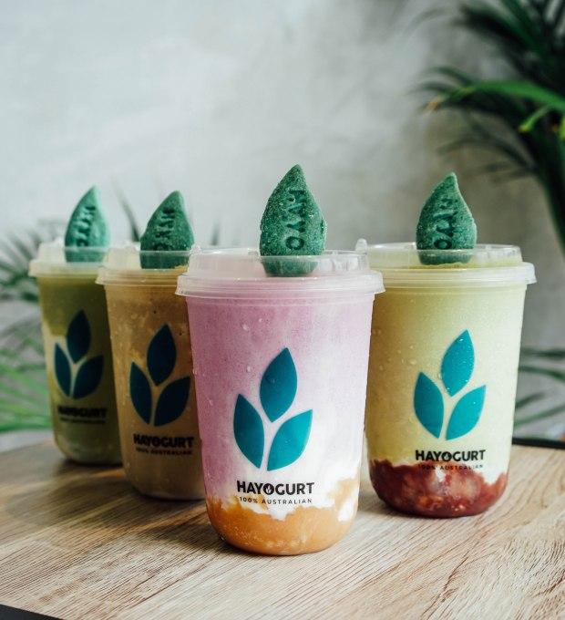 hayo-handcrafted-yogurt-japan-autumn-season-special