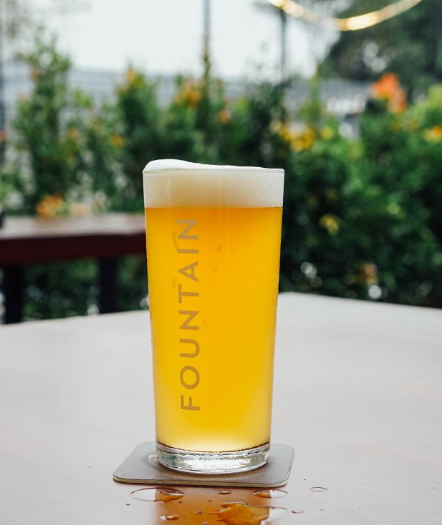 fountain-microbrewery-and-restaurant-white-wash-weizen
