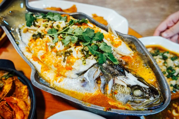 wang-thai-kitchen-steamed-seabass-with-thai-lemongrass