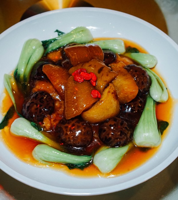 famous-kitchen-Braised Sea Cucumber with Fish Maw & Mushroom